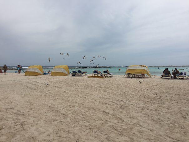 aruba baby beach 1