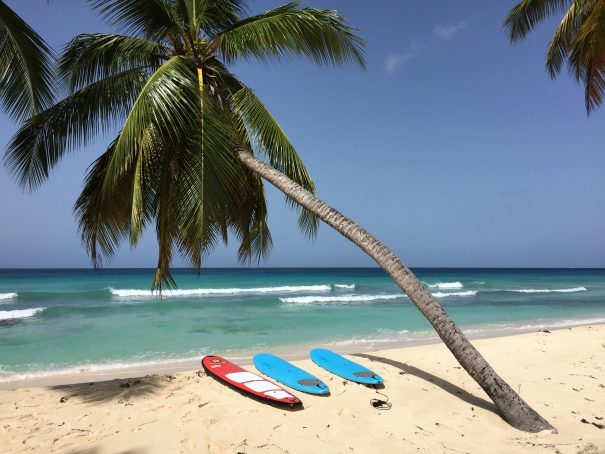 barbados surfing 1