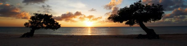 best caribbean blogs aruba