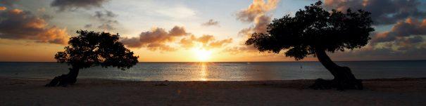 best caribbean blogs aruba