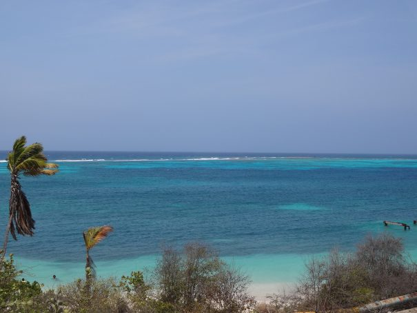 rodger's beach alexandre breveglieri