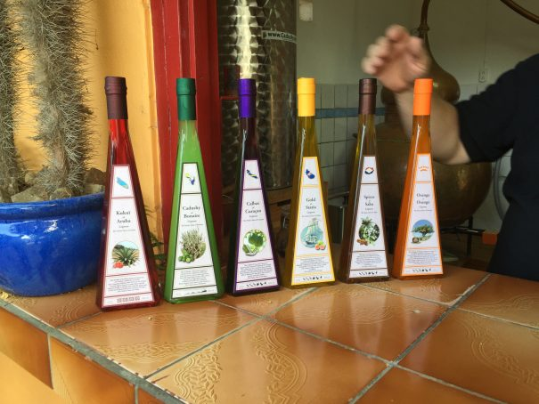 bonaire cactus liqueur