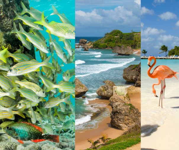 25 most beautiful places in the caribbean