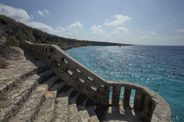 direct flights from toronto to bonaire